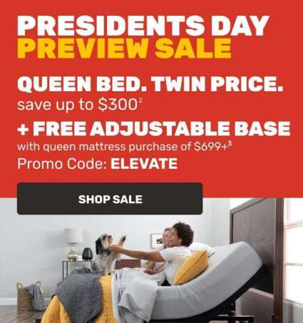 Presidents Day Preview Sale - Queen Bed. Twin Price.
